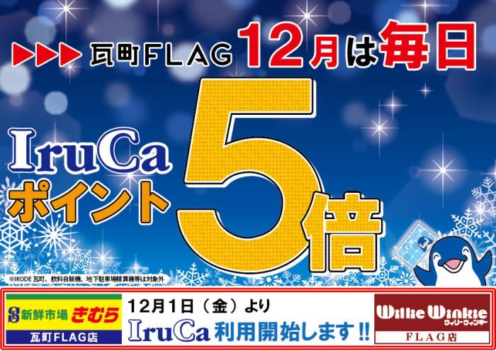 IruCa5倍1231(青)